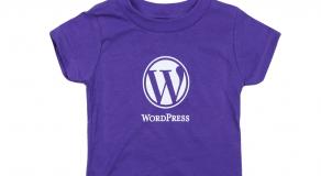 wordpress-kursus-kelas-bina-website-malaysia-internet-marketing-johor-melaka-ipoh-kuala-lumpur-selangor