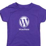 Wordpress Menjadi Pilihan Untuk Sesiapa Sahaja Membina Website