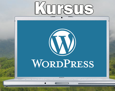 kursus-wordpress-ecommerce-bisnes-online-internet-marketing