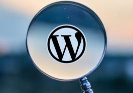 scan-wordpress-wp-website-theme-plugin-used-laman-web-web-development